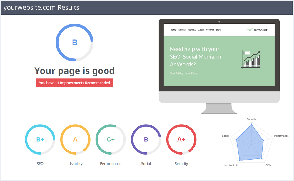 The Spry Cricket Pulse Free SEO Report